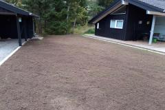 Etablerring-af-græs-3a