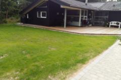 Etablerring-af-græs-4a